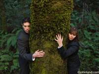 Picture of a man and a woman hugging a tree in the forest.  The businessman and businesswoman have their arms around a large tree and are pressing their bodies against the bark on the trunk of the tree. The tree is covered in moss.